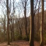 Hügel Baldeneysee